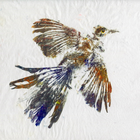 gyotaku bird